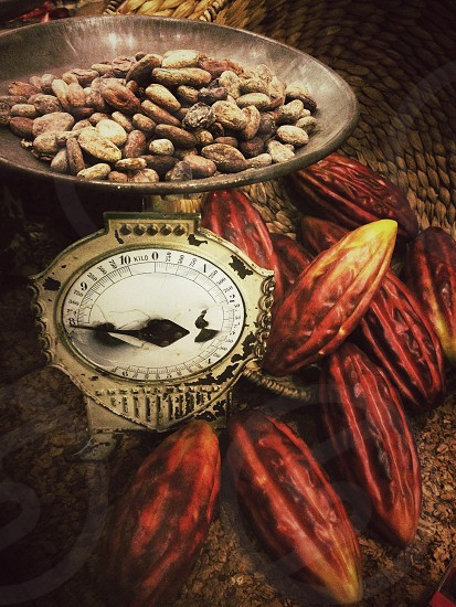 brown nuts on weighing scale beside brown cacaos photo