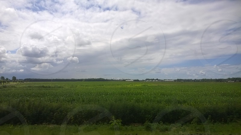 Farm Land Sky Clouds Holland Netherlands Grass Field Country photo