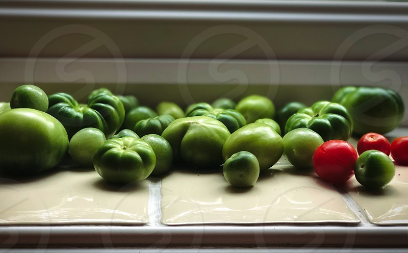 A selection of Green Tomatoes photo