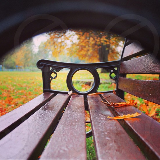 And she was sat there on that bench... photo