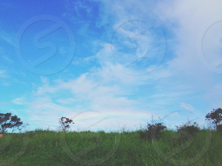 cirrus cloud  photo