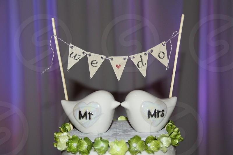 two white ceramicf Mr and Mrs bird figurines photo