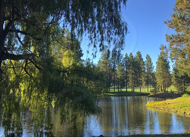 Trees surround the lake at Awbrey Glen Bend Oregon photo