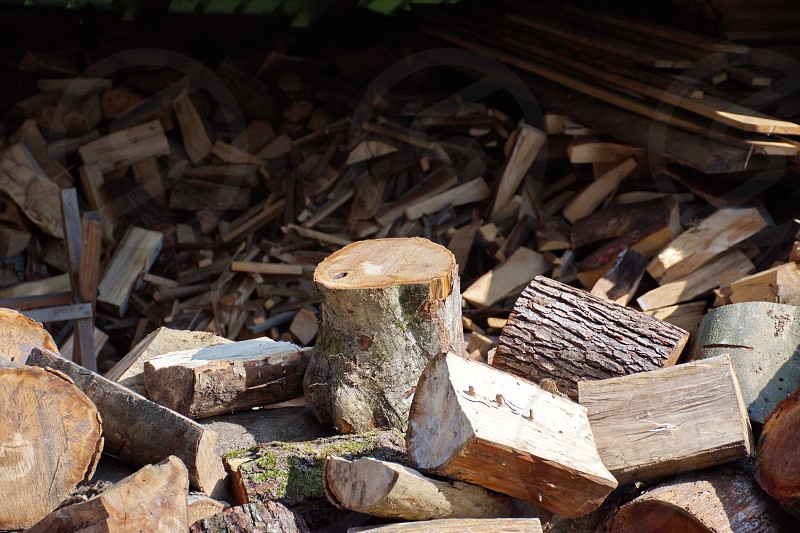 A pile of stacked firewood prepared for heating - gathering firewood for winter photo