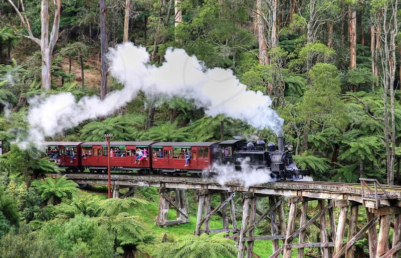 Famous Melbourne tourist train the Puffing Billy crosses the Belgrave trestle bridge in the Dandenong Ranges. photo