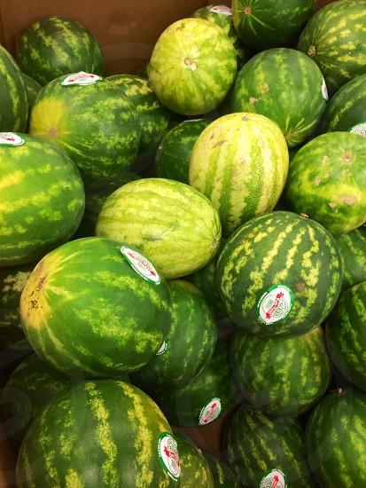 Nice melons.  photo