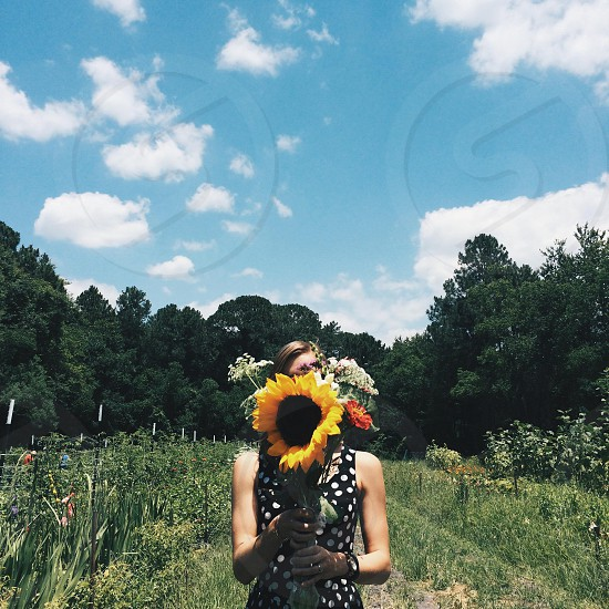 woman in white dotted black sleeveless dress holding yellow sunflower photo