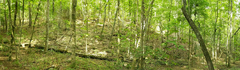 Cherokee Apline Ridge Trail photo