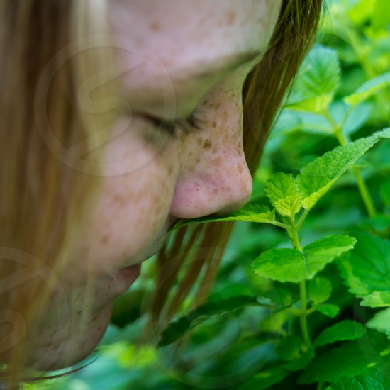 green perspective color child girl smell freckles mint leaf leaves plant grow nature photo