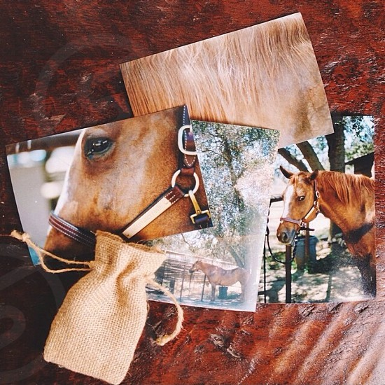 brown woven drawstring bag beside horse photo photo