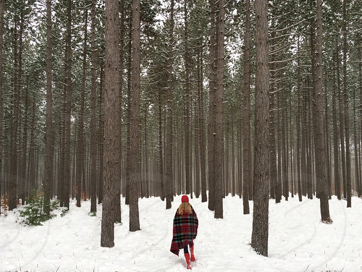 woman wrapped in black red checkered blanket walking towards the woods with snow photo