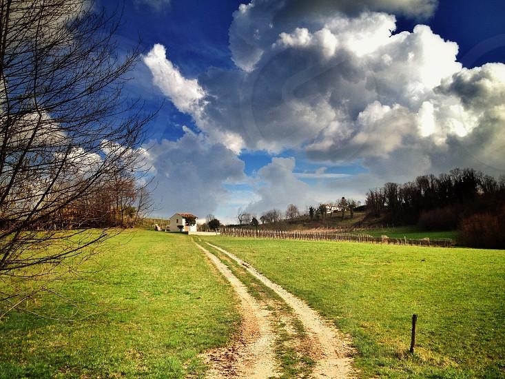 pathway between green grassy field photo