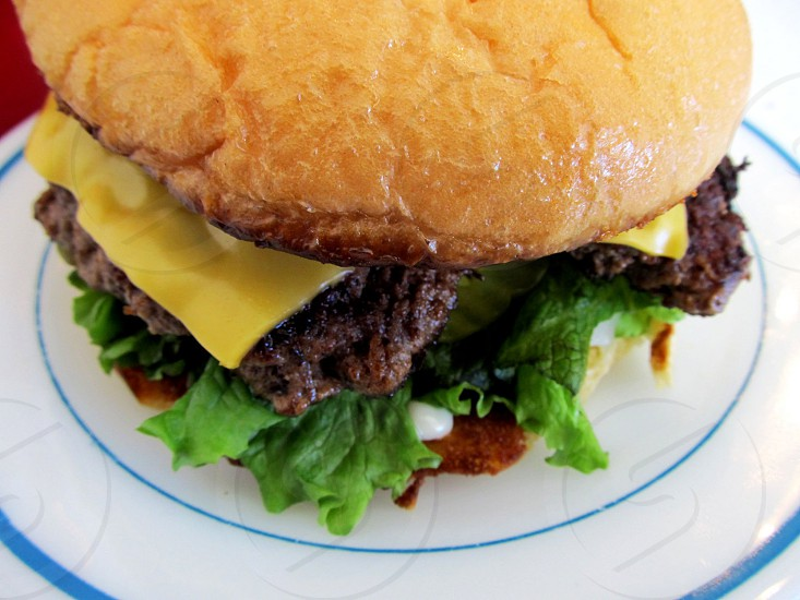Cheeseburger from above on blue rimmed plate photo