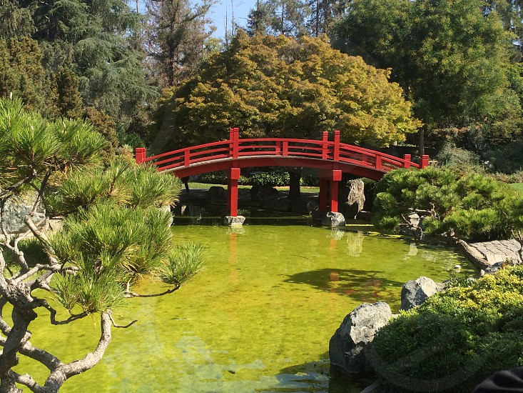 Japanese friendship Garden San Jose California photo