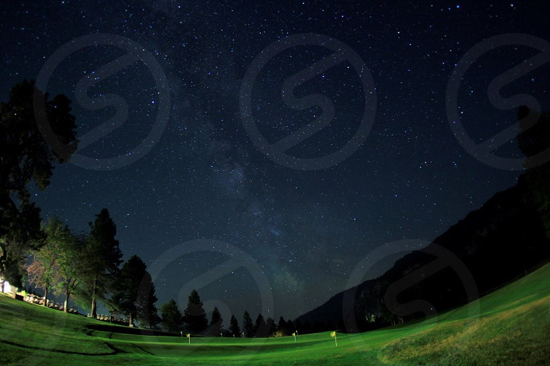 green grass and trees during night time photo