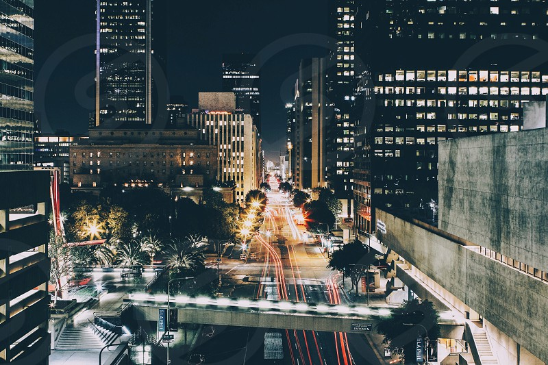 high rise buildings at night photo
