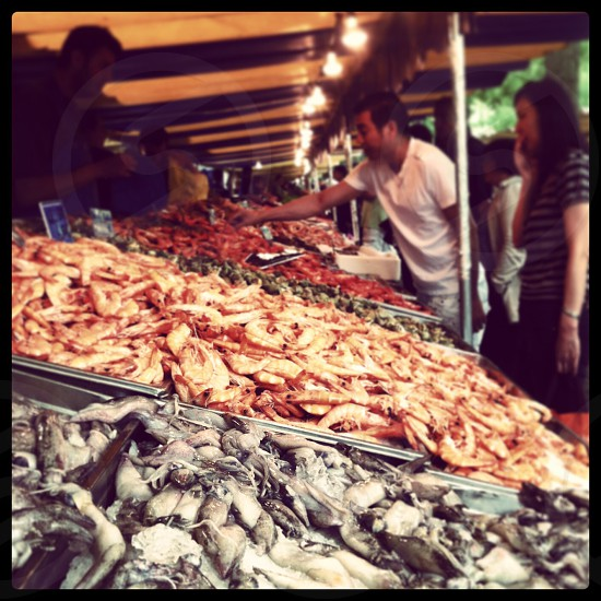 Market paris France fish market photo