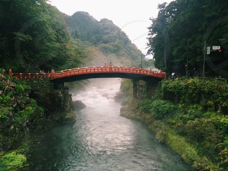 Bridge Japan nature mist river forest photo