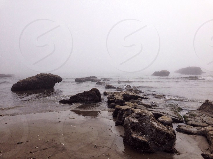 rocky beach during misty day photo
