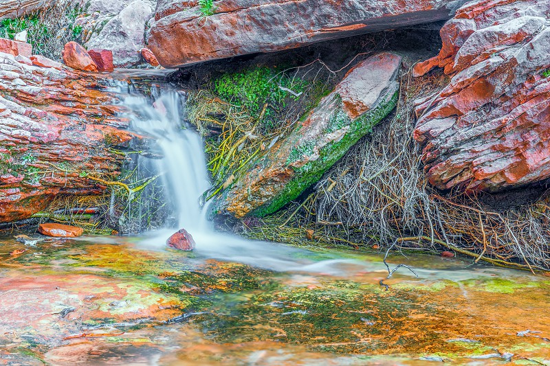 The Emerald Pools trail. Waterfall. Zion National Park. Utah. USA photo