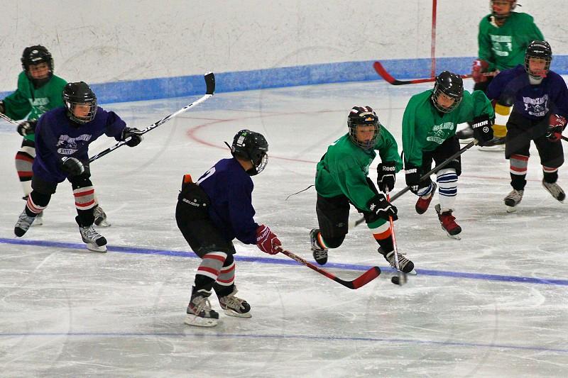Youth Ice Hockey photo