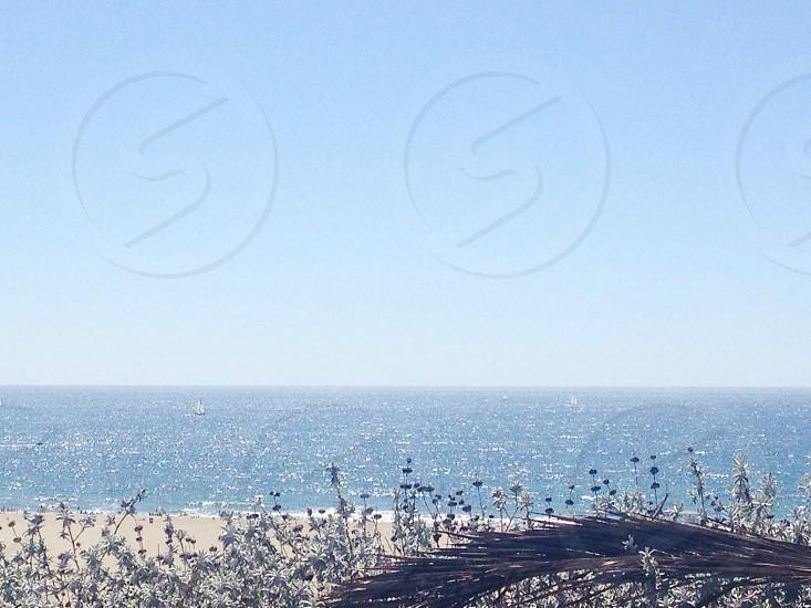 Santa Monica California  photo