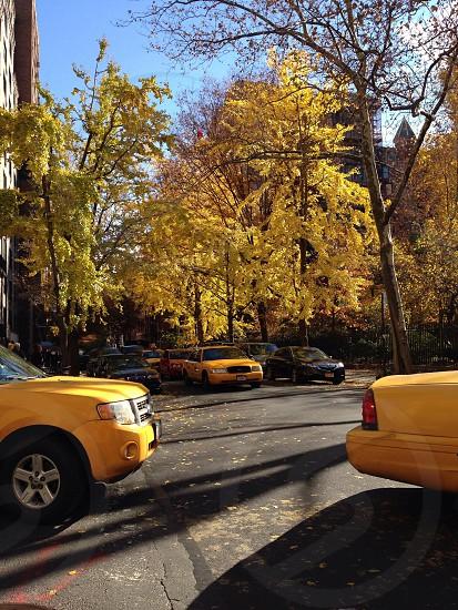 Gramercy Park on 21st street photo
