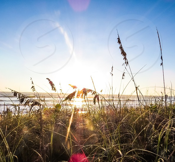 Beach ocean vacation waves nature sunrise calm summer spring Florida saltlife  photo
