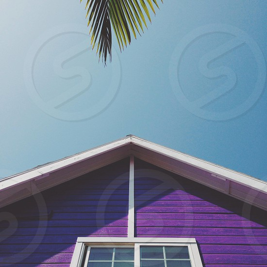 purple painted a-frame house white painted trim photo