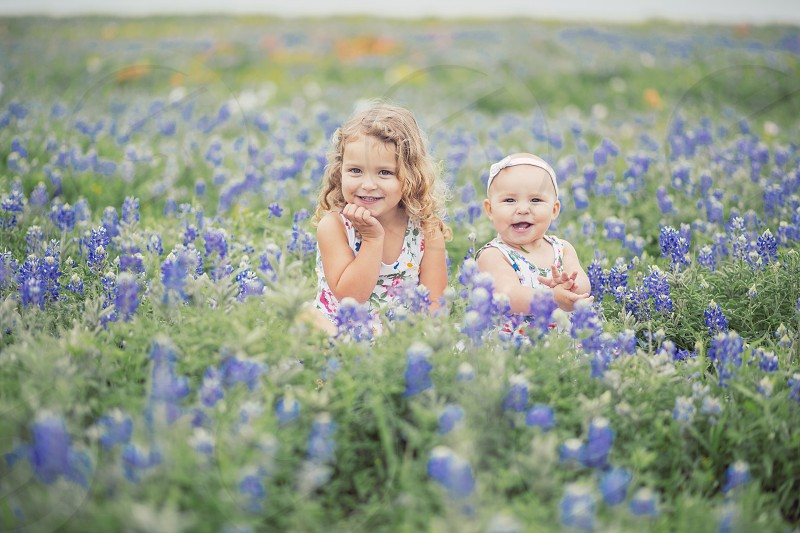 Adorable girls in a field of bluebonnets  photo
