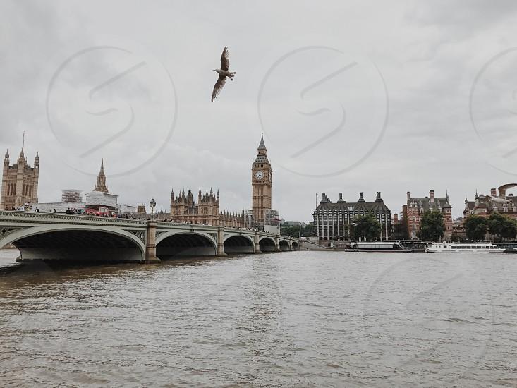 Westminster London UK photo