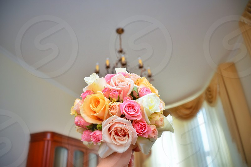 bouquet of pink yellow and white rose on selective focus photography photo