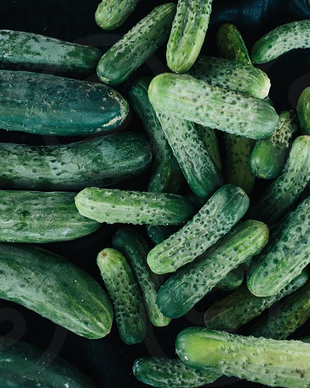 green cucumbers photo