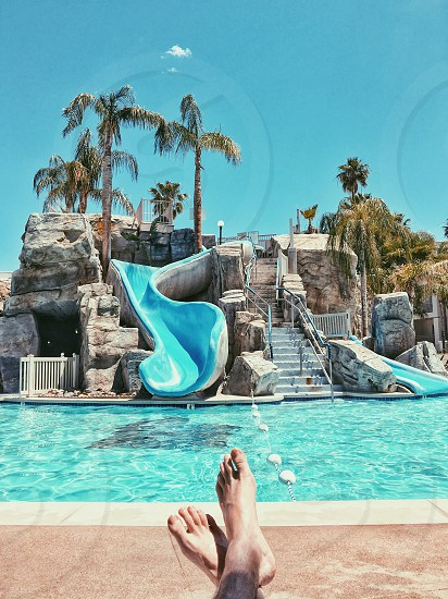 blue and gray concrete swimming pool slide beside palm plants near blue body of water photo