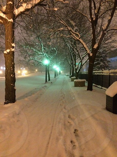 5AM during an early snow fall outside Ford Museum (Grand Rapids Michigan) photo