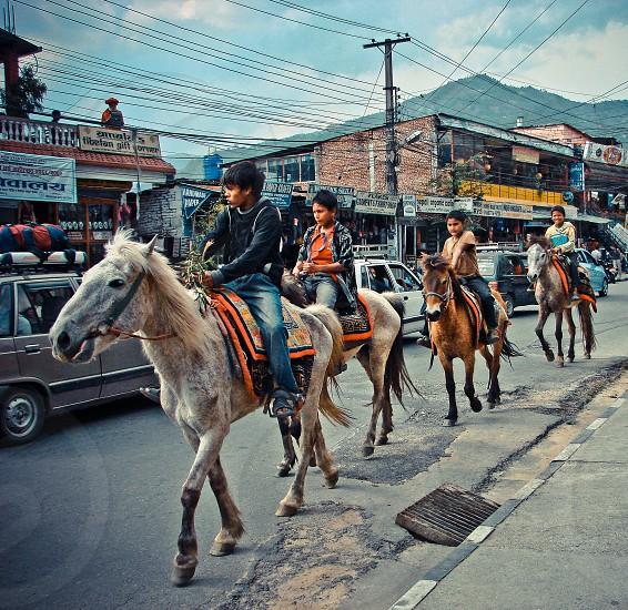 children riding horses on street photo