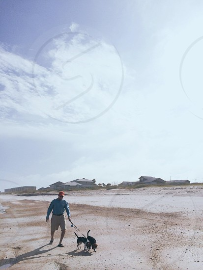 A man and his beagle dogs walking on the beach. Fernandina Beach Amelia Island Florida.  photo