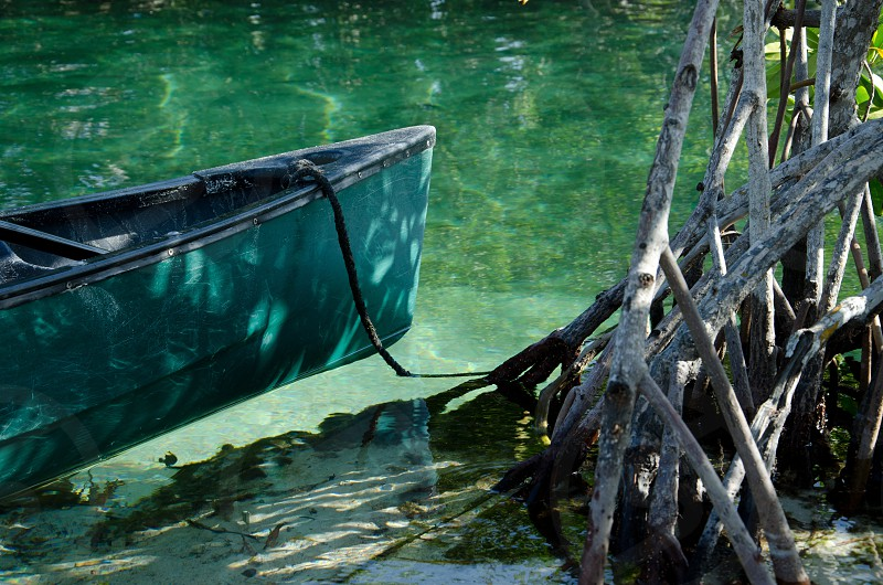 Image of a green canoe resting in water photo