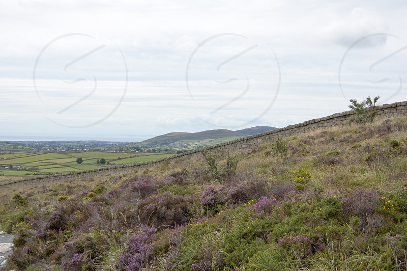 Mourne mountains dry stone wall heather Northern Ireland countryside country walk photo