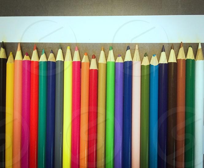 multi-colored color pencils photo