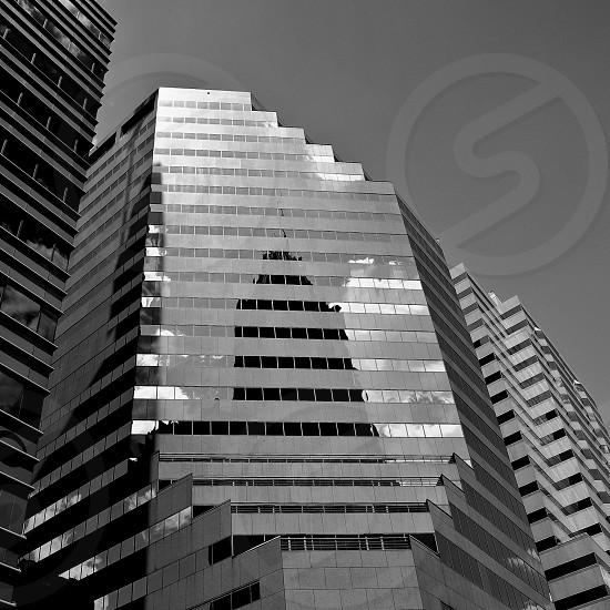 gray glass high rise building photo