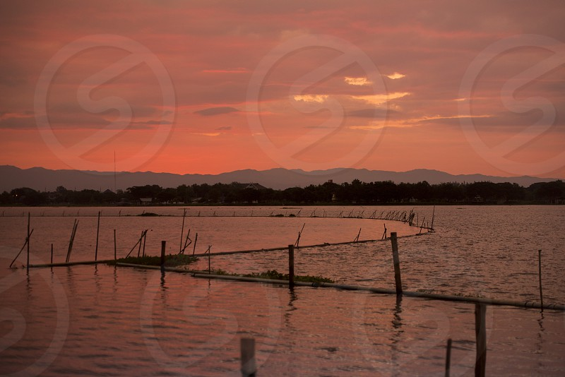 the landscape at the lake of Kwan Phayao in the city of Phayao in North Thailand. photo