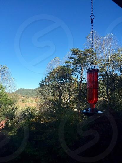 Hummingbird feeder photo
