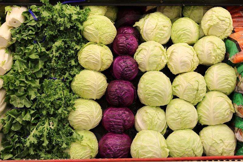 Farm to table. Vegetable. Summer season  photo