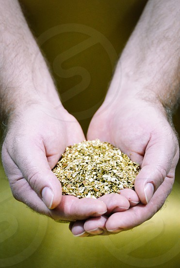 Male Caucasian hands holding golden pieces photo
