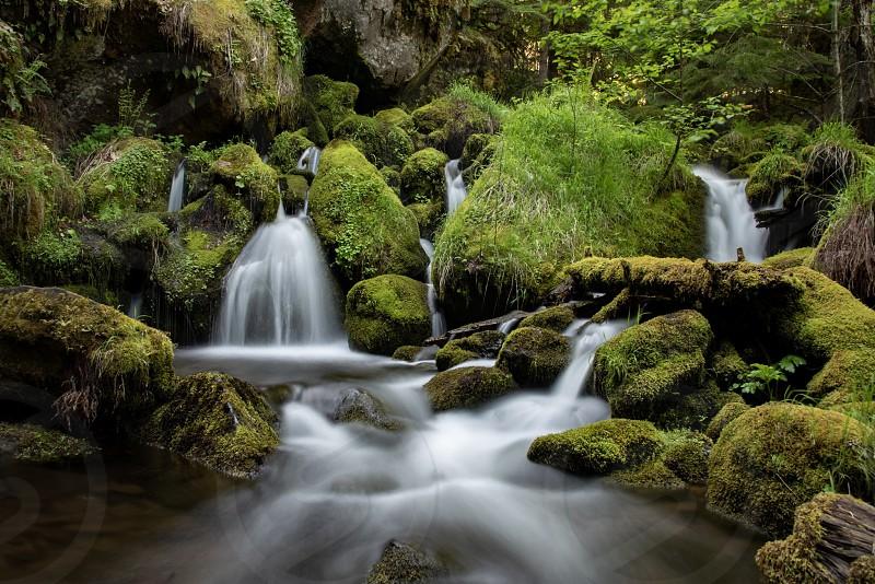 Waterfall Watson Oregon Moss green river photo