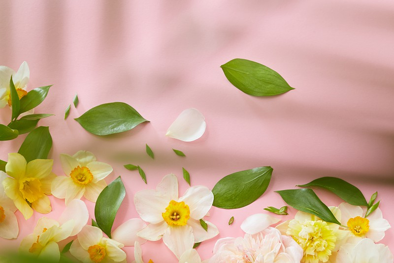 Vintage frame with flowers and leaves on a pink background with space for text. Flat lay photo