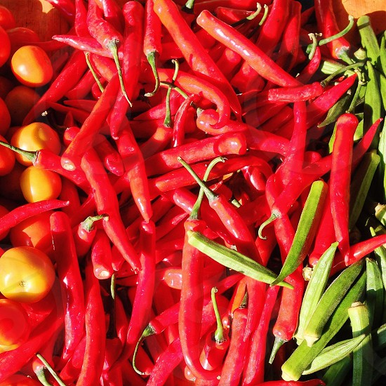 bunch of red chilis and lady's fingers photo