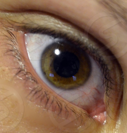 Brown eye photo
