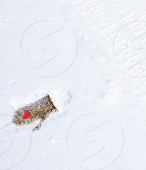 snow mitten; lost mitten; mitten fell out of car; mittens; winter photo